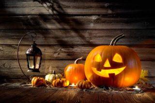 Halloween | Book Tag |