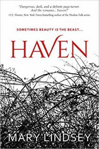 Blog Tour: Haven by Mary Lindsay