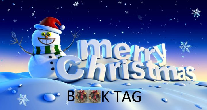 Merry Christmas |Book Tag|